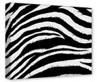 Gallery Wrapped 11x14x1.5  Canvas Art - Zebra